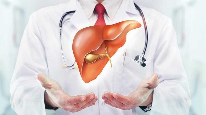 Thuốc bổ gan có tác dụng giải độc gan và tăng cường chức năng gan, phòng tránh các bệnh ở gan.