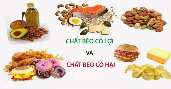 Chất béo có lợi giúp tiêu hóa tốt và giảm nguy cơ mắc bệnh tim