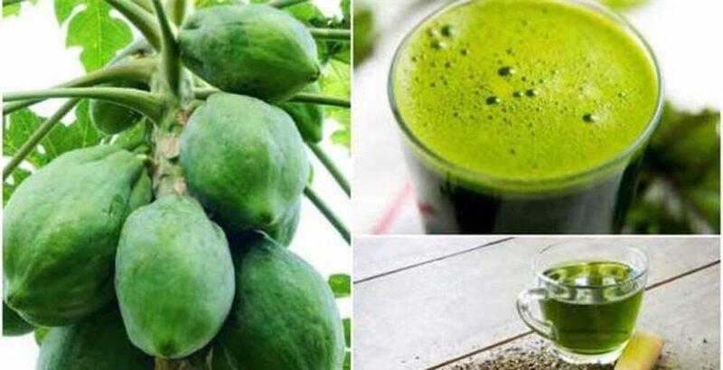 Kết hợp đu đủ xanh với lá trà xanh mang lại hiệu quả tốt hơn