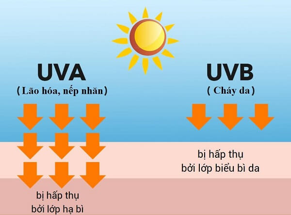 Luôn bảo vệ da khỏi tia UV để không bị xạm nám và tàn nhang