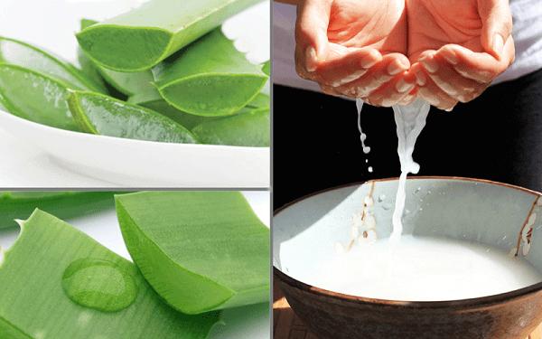 Mặt nạ nha đam và nước vo gạo là phương pháp rất dễ làm tại nhà