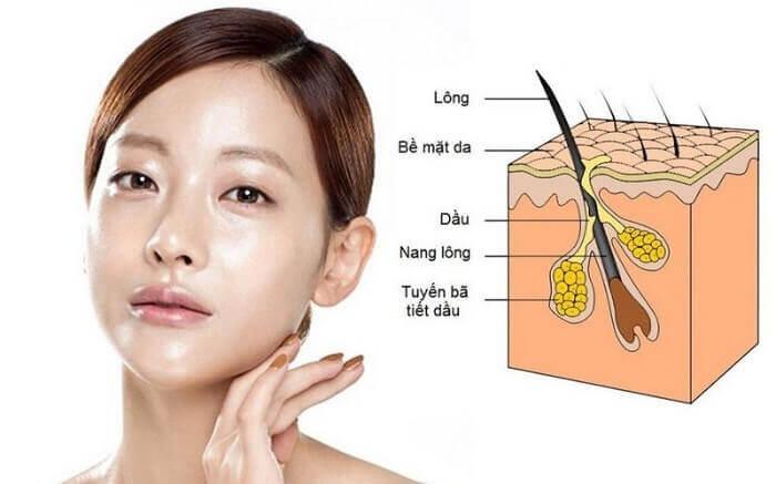 Các nguyên nhân dẫn đến tình trạng da dầu nhờn
