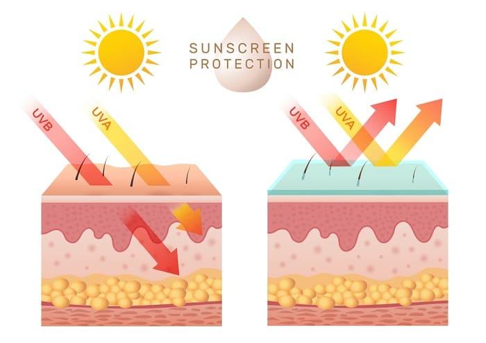 Thoa kem chống nắng giúp bảo vệ da khỏi những ảnh hưởng xấu của tia UV