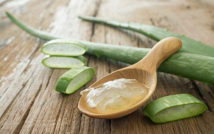 Trong nha đam có nhiều Vitamin và khoáng chất giúp trị nám tàn nhang hiệu quả