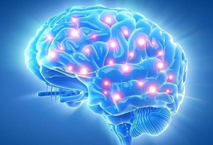Viên uống bổ não cải thiện những vấn đề về não